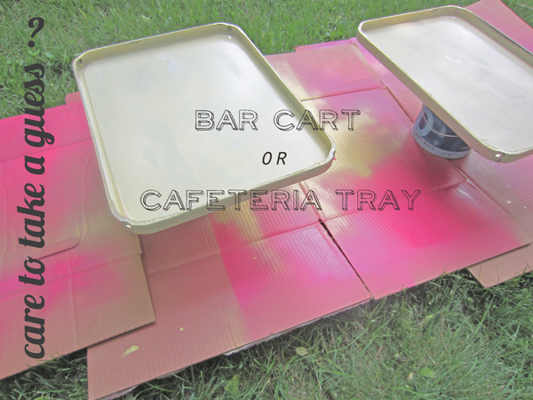 FancyFreeMe cart tray