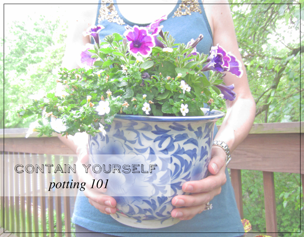 FancyFreeMe Potting 101